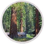 Giant Sequoias Mariposa Grove Round Beach Towel