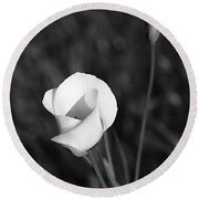 Mariposa Lily 2 Round Beach Towel