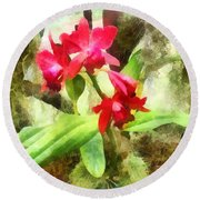 Maroon Cattleya Orchids Round Beach Towel