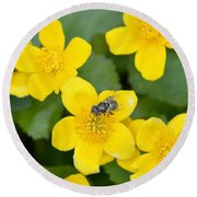 Marsh Marigold Round Beach Towel