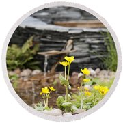 Marsh Marigolds Round Beach Towel