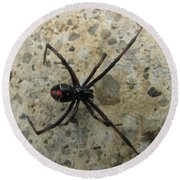 Maryland Black Widow Round Beach Towel