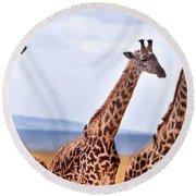 Masai Giraffe Round Beach Towel