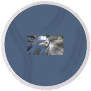 Mating Plumage Round Beach Towel