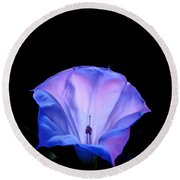 Mauve Blue Black Angels Trumpet Round Beach Towel