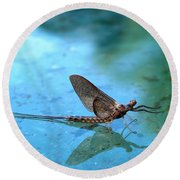 Mayfly Reflected Round Beach Towel