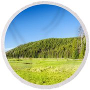 Meadow And Forest Round Beach Towel