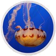 Medusa Jellyfish  Round Beach Towel