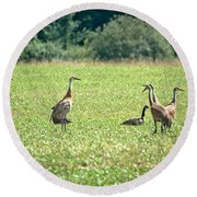 Meeting Of The Cranes Round Beach Towel