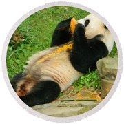 Mei Xiang Chowing On Frozen Treat Round Beach Towel