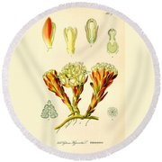 Melera Round Beach Towel