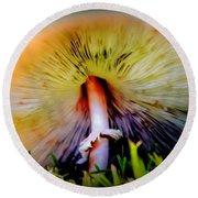 Mellow Yellow Mushroom Round Beach Towel by Karen Wiles