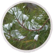 Melting Snow In The Pines Round Beach Towel
