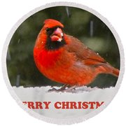 Merry Christmas Cardinal Round Beach Towel