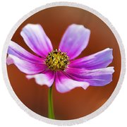 Merry Cosmos Floral Round Beach Towel