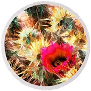 Mesh Of Cactus Needles Round Beach Towel