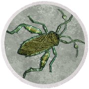 Metallic Green And Gold Prehistoric Insect  Round Beach Towel