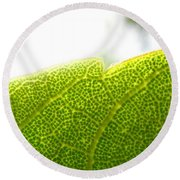 Micro Leaf Round Beach Towel
