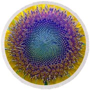 Middle Of Sunflower Close-up Round Beach Towel