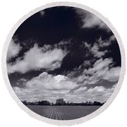 Midwest Corn Field Bw Round Beach Towel