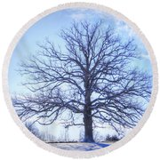 Mighty Oak In Winter Round Beach Towel