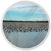 Migrating Geese Round Beach Towel