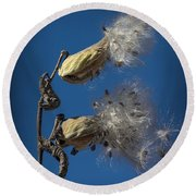 Milkweed Pods On A Blue Background  Round Beach Towel