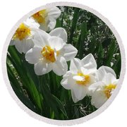 Miner's Wife Daffodils Round Beach Towel
