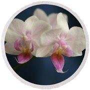 Mini Orchids 2 Round Beach Towel