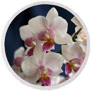 Mini Orchids 3 Round Beach Towel