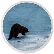 Mink Round Beach Towel