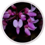 Mirrored Redbuds Round Beach Towel