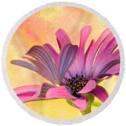 Miss Daisy Round Beach Towel