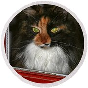 Miss Gizzie Waits By Diana Sainz Round Beach Towel