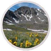 Missouri Mountain And Wildflower Landscape Round Beach Towel