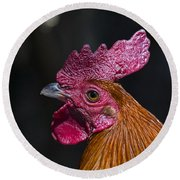Mister Rooster Round Beach Towel