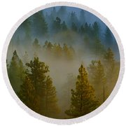 Misty Morning In The Pines Round Beach Towel