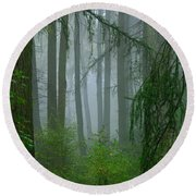 Misty Woodland Round Beach Towel