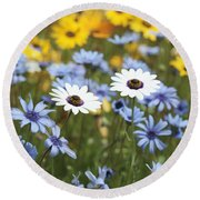 Mixed Daisies Round Beach Towel