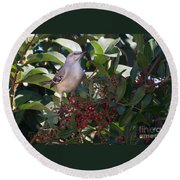 Mocking Bird And Berries Round Beach Towel