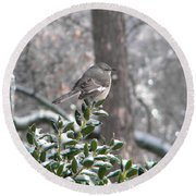 Mockingbird Cold Round Beach Towel
