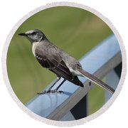 Mockingbird Perched Round Beach Towel