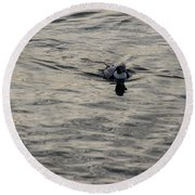 Moire Silk Water And A Long Tailed Duck Round Beach Towel