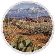 Mojave Desert Cactus Round Beach Towel