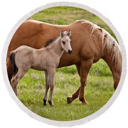 Mom And Foal 2 Round Beach Towel