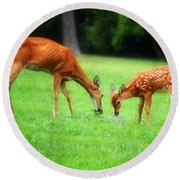 Mom Sharing A Snack With Her Baby Fawn Round Beach Towel