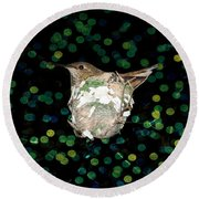 Mommy Hummingbird In The Nest Round Beach Towel