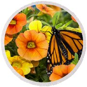 Monarch Among The Flowers Round Beach Towel