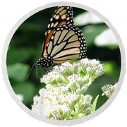 Monarch Butterfly 58 Round Beach Towel
