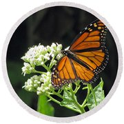 Monarch Butterfly 59 Round Beach Towel